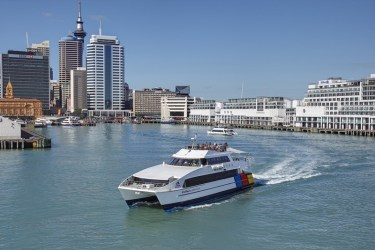 Harbour cruise options from the center of the city.