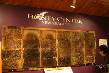 Honey-Centre Warkworth- 40 minutes drive
