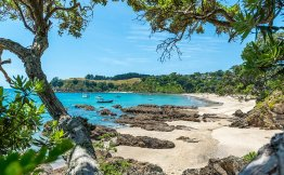 Waiheke Island stunning beaches