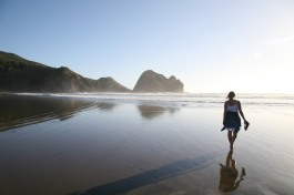 West coast beach - Piha - Amazing coastal scenery and bush walks - one hour drive